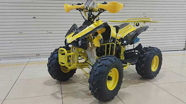 Motor ATV Bee Happy Lamda 110